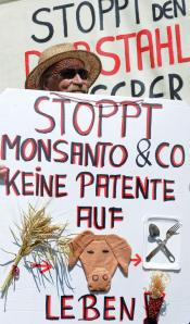 German Protest GMO