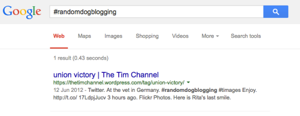 Google #randomdogblogging